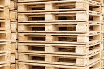 Pallet Distribution